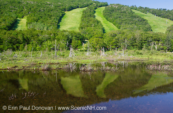 Reflection of Cannon Mountain Ski Trails in Echo Lake during the summer months in Franconia Notch State Park  of the New Hampshire White Mountains.