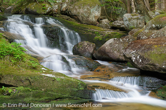 Upper Salroc Falls on Snyder Brook in Randolph, New Hampshire during the summer months. This waterfall is located along the Fallsway Trail and is part of the Snyder Brook Scenic Area.