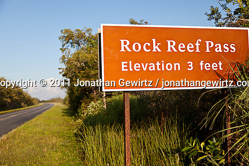 Rock Reef Pass, shown here where it crosses the main road in Everglades National Park, rises just three feet above the surrounding sawgrass savannah. The tiny height differential above the surrounding grassland supports trees and other vegetation that could not survive a few feet away. (Jonathan Gewirtz)